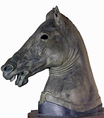 Cavallo Medici
